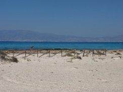 Chrissi Island - tour vanuit Stalis Kreta zonvakantie