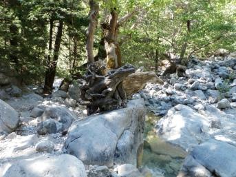 ecotoerisme kreta natuur zonvakantie