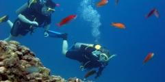 diving-in-Greece kos duiken zonvakantie