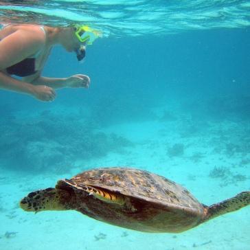 duiken en snorkelen op vakantie in griekenland