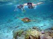 kreta snorkelen tijdens je zonvakantie
