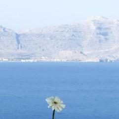 cropped-bed-breakfast-griekenland-vakantie-23.jpg