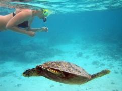 duiken-en-snorkelen-op-vakantie-in-griekenland