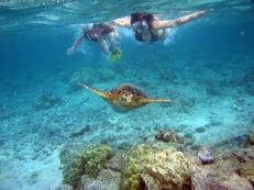 kreta-snorkelen-tijdens-je-zonvakantie