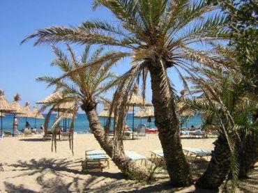 vai-palm-beach-vakantie kreta