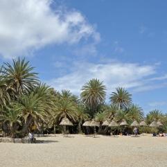 vai strand palmenstrand vakantie kreta griekenland