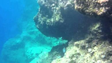 snorkelen en duiken op Hydra - vakantie griekenland 1